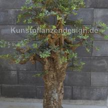 003_bonsaibaeumchen_mit_dickem_stamm